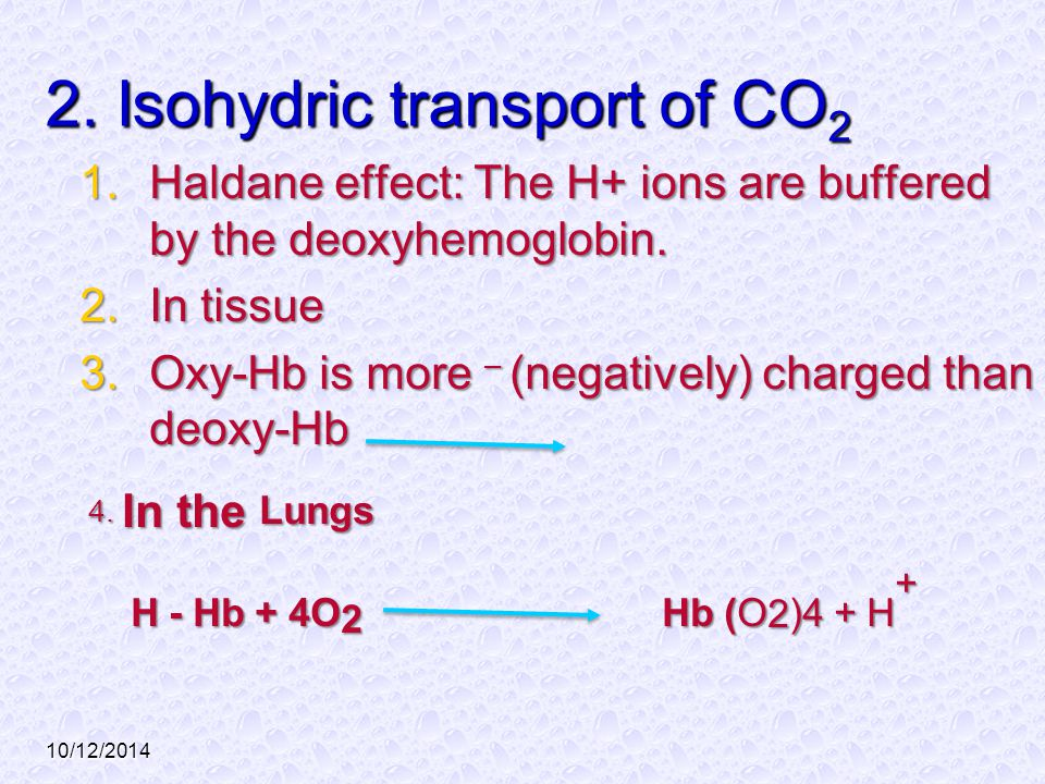 2. Isohydric transport of CO2