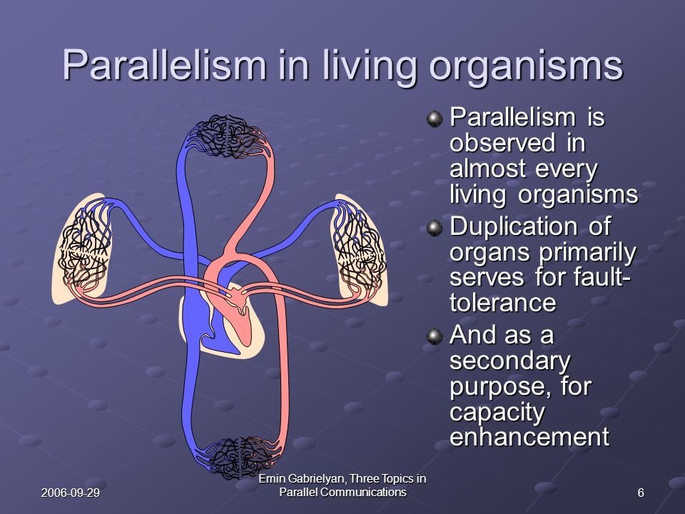 Parallelism in living organisms