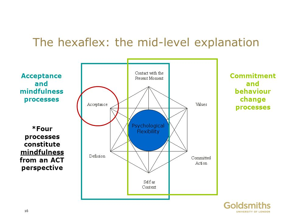 The hexaflex: the mid-level explanation