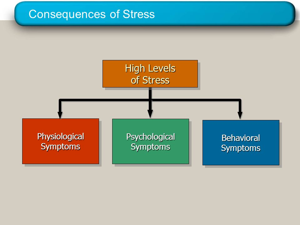 A Model of Stress © 2005 Prentice Hall Inc. All rights reserved.