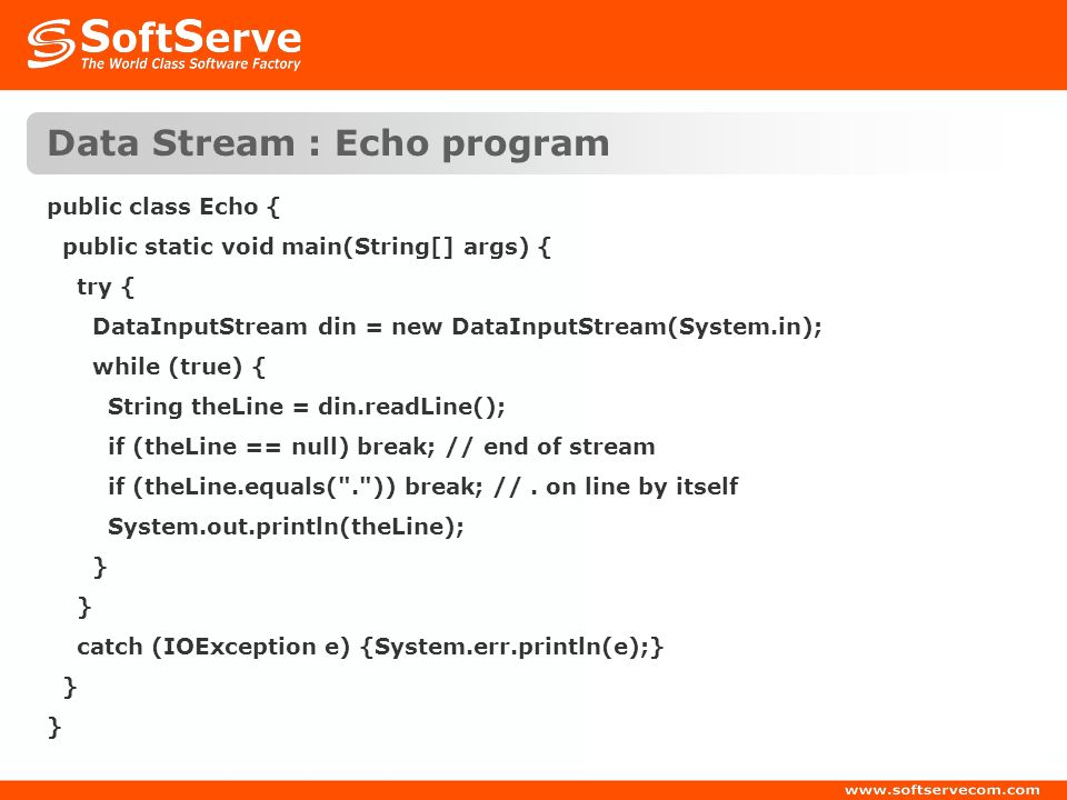 Data Stream : Echo program
