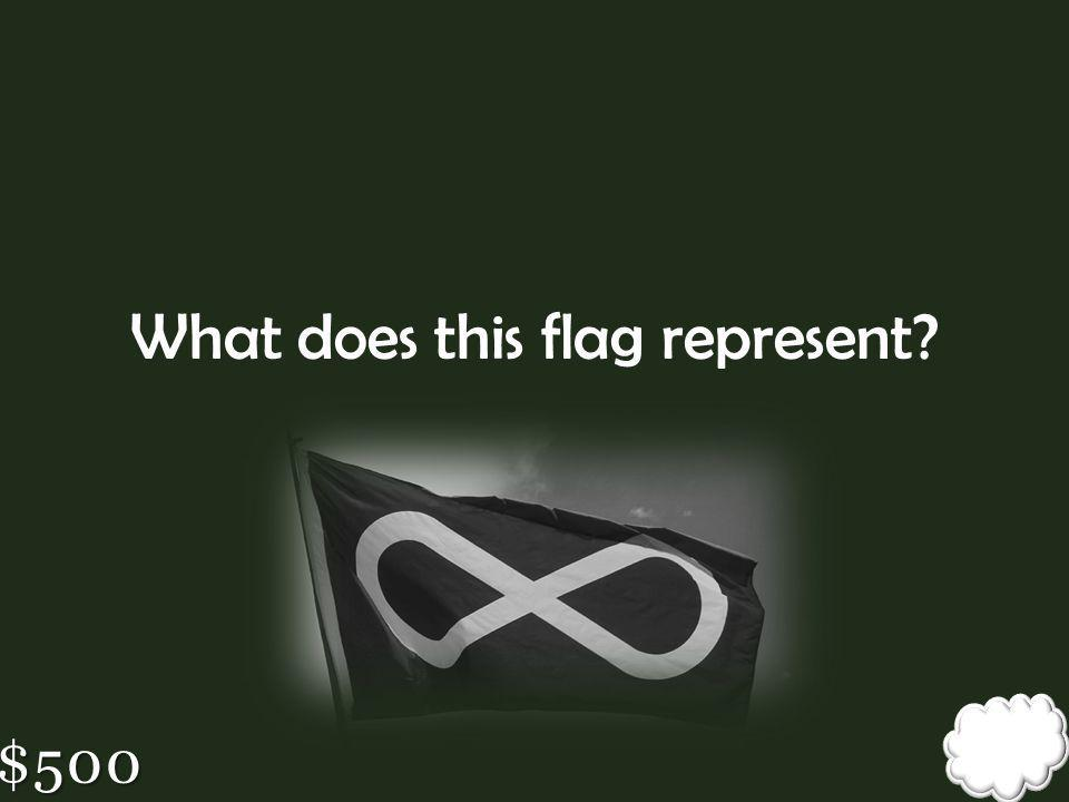 What does this flag represent