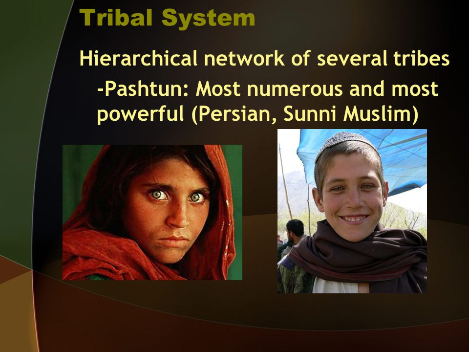 Tribal System Hierarchical network of several tribes