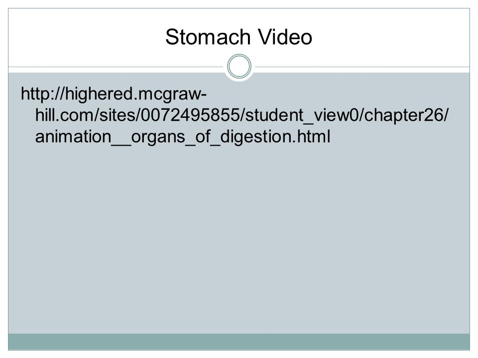 Stomach Video http://highered.mcgraw-hill.com/sites/0072495855/student_view0/chapter26/animation__organs_of_digestion.html.