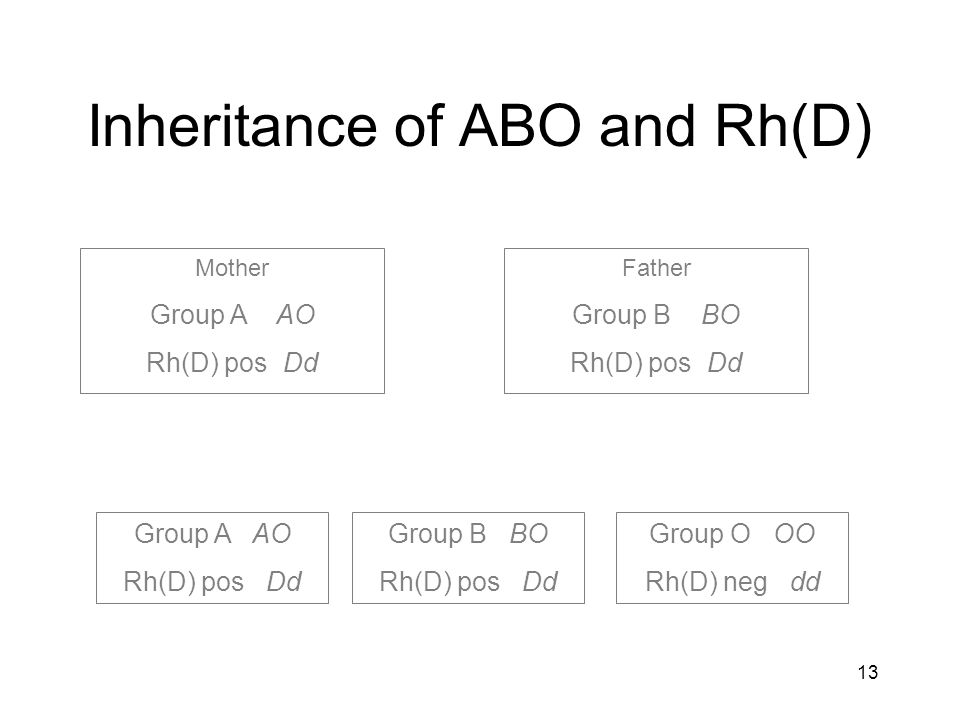 Inheritance of ABO and Rh(D)