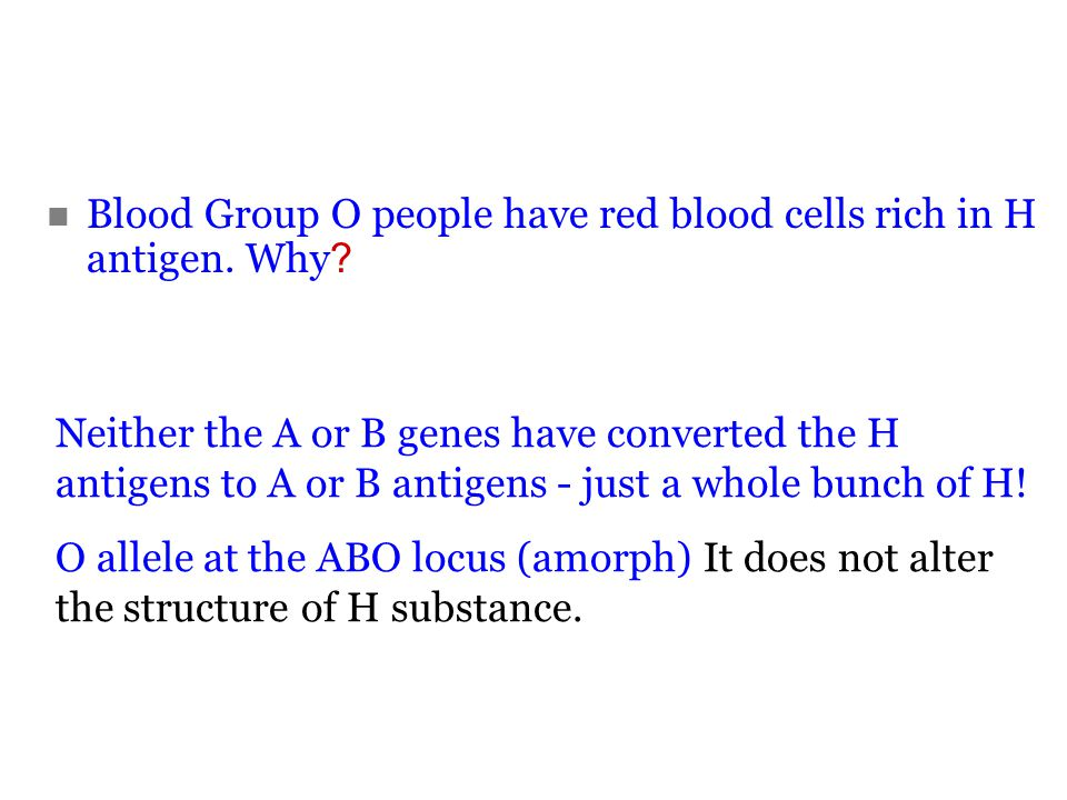 Blood Group O people have red blood cells rich in H antigen. Why