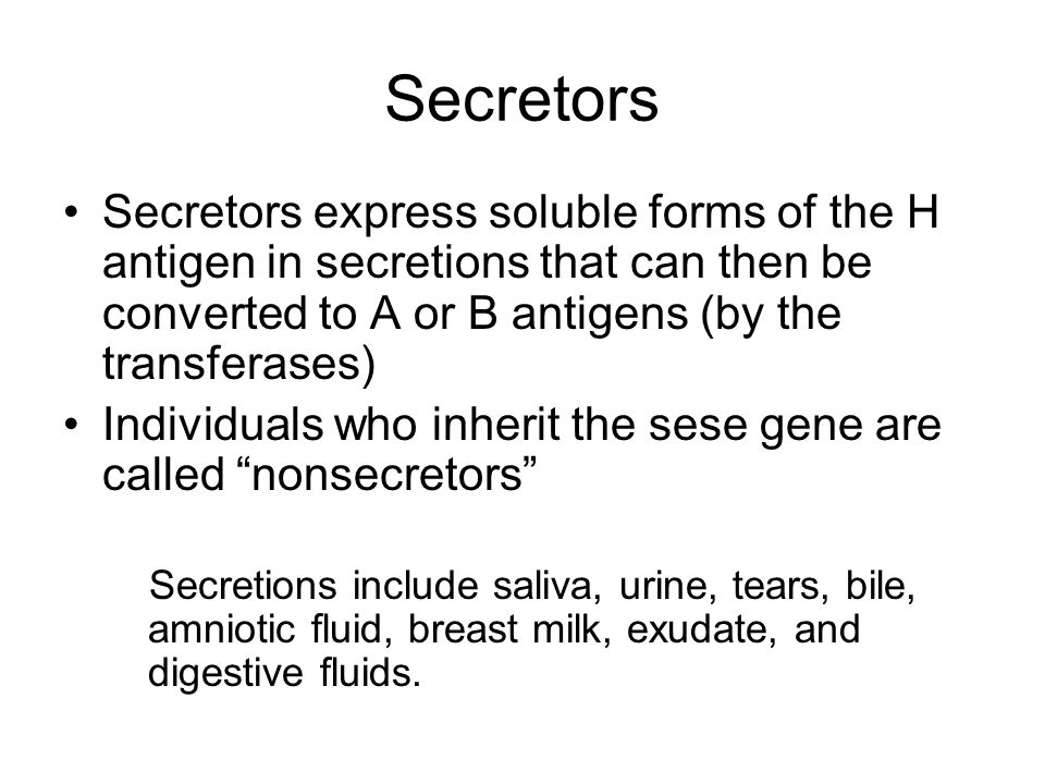 Secretors Secretors express soluble forms of the H antigen in secretions that can then be converted to A or B antigens (by the transferases)