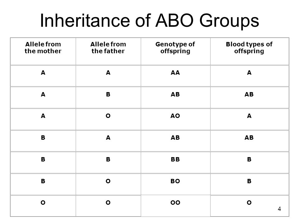 Inheritance of ABO Groups