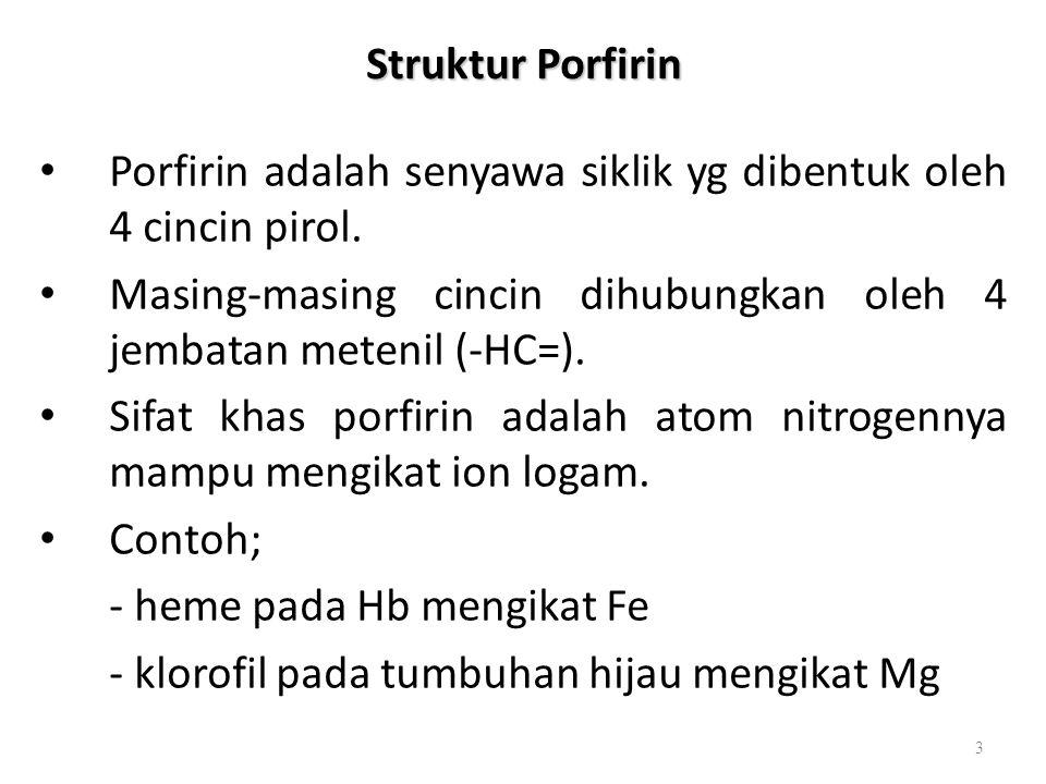 Struktur Porfirin Porfirin adalah senyawa siklik yg dibentuk oleh 4 cincin pirol. Masing-masing cincin dihubungkan oleh 4 jembatan metenil (-HC=).