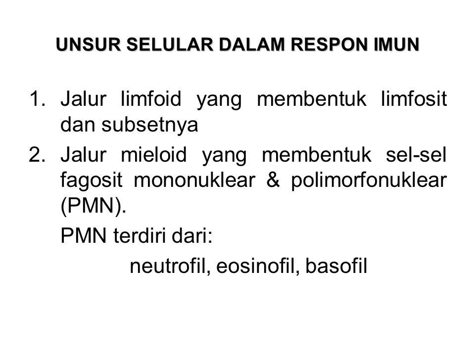 UNSUR SELULAR DALAM RESPON IMUN