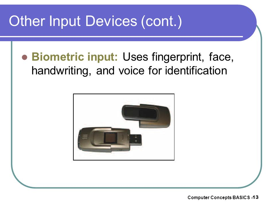 Other Input Devices (cont.)