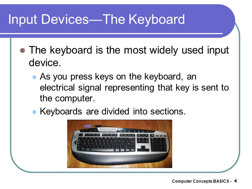 Input Devices—The Keyboard