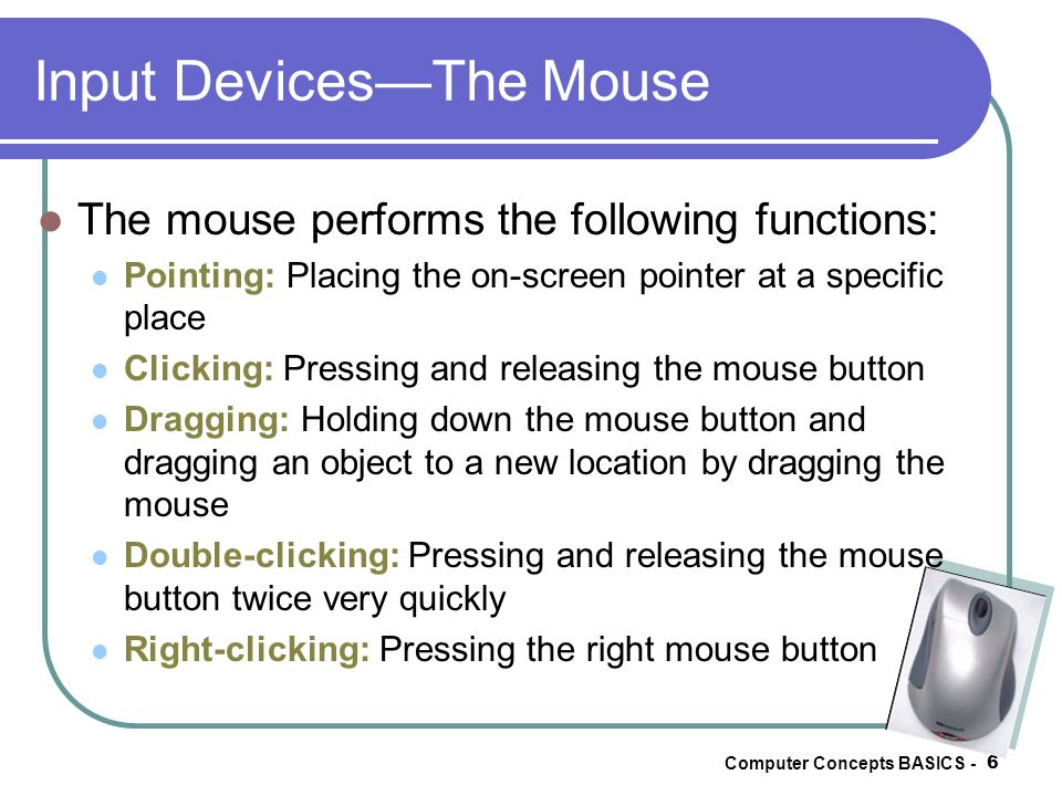 Input Devices—The Mouse
