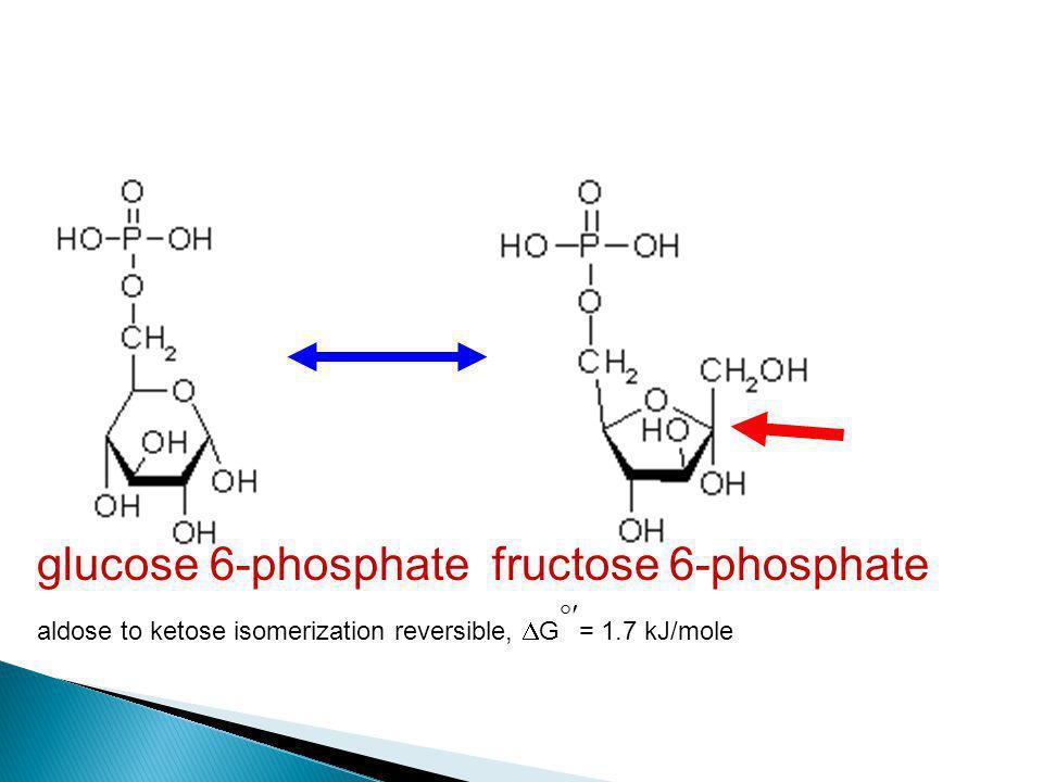 glucose 6-phosphate fructose 6-phosphate