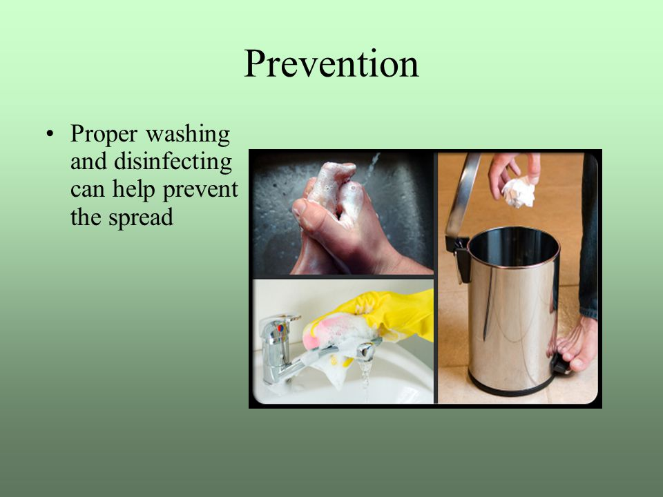 Prevention Proper washing and disinfecting can help prevent the spread