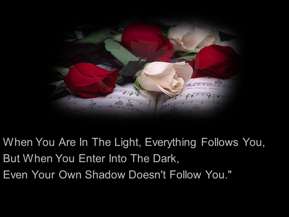 When You Are In The Light, Everything Follows You,