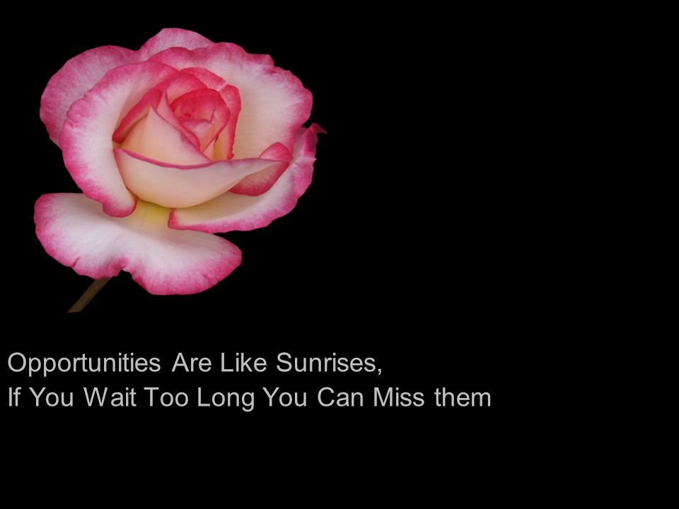 Opportunities Are Like Sunrises,