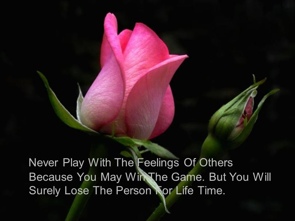 Never Play With The Feelings Of Others Because You May Win The Game