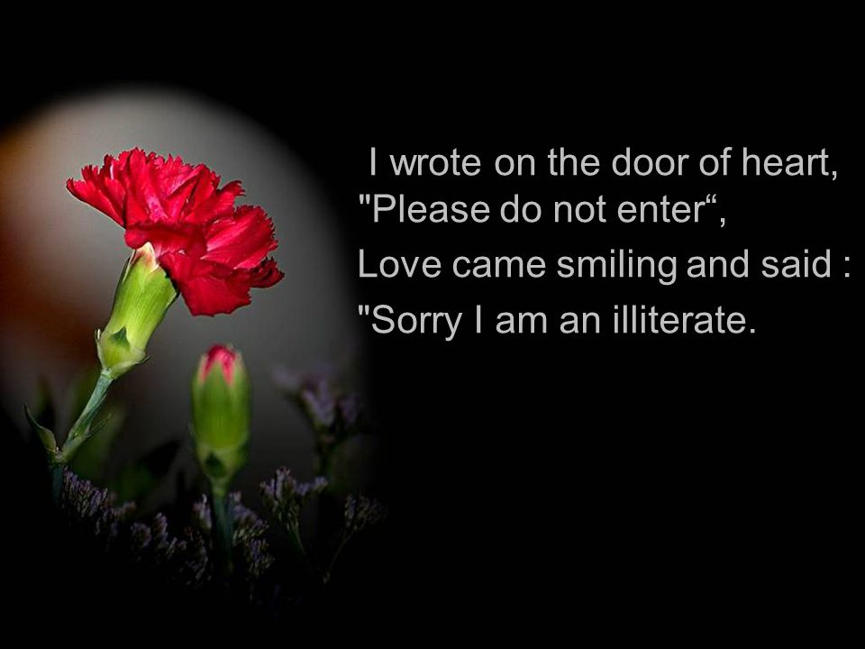 I wrote on the door of heart, Please do not enter ,