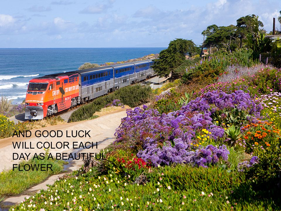 AND GOOD LUCK WILL COLOR EACH DAY AS A BEAUTIFUL FLOWER