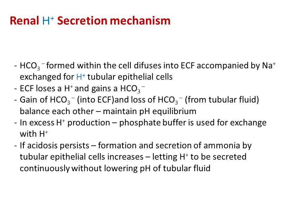 Renal H+ Secretion mechanism