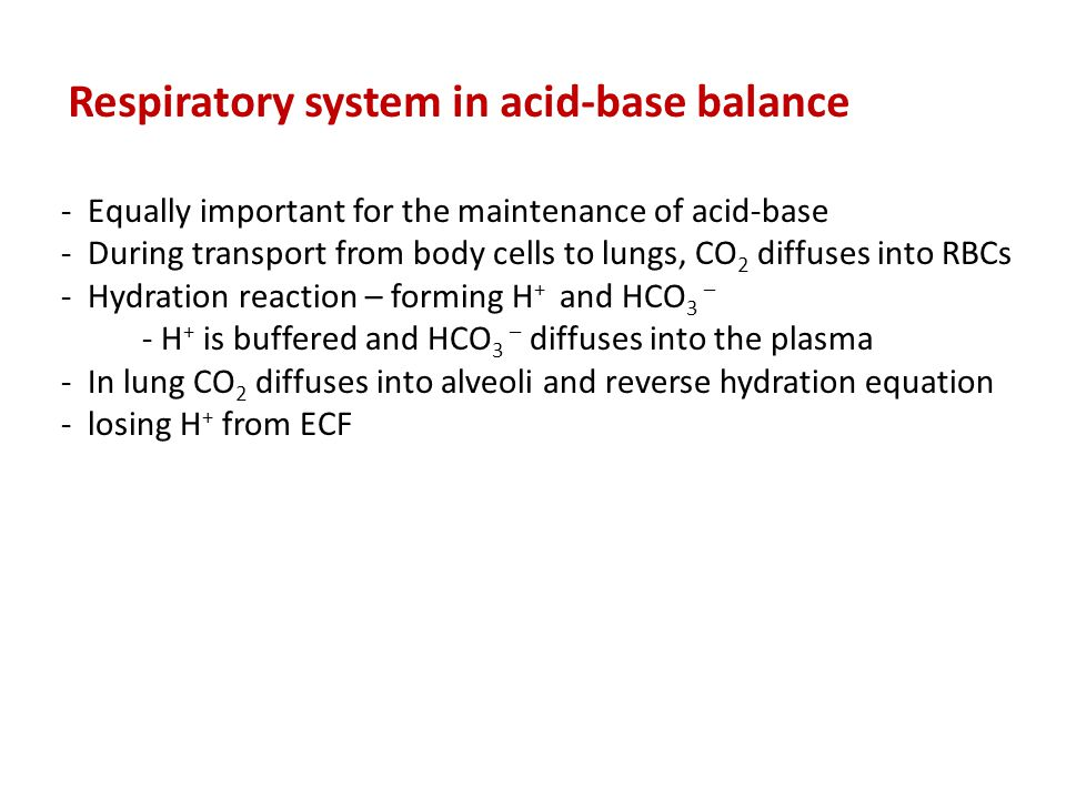 Respiratory system in acid-base balance