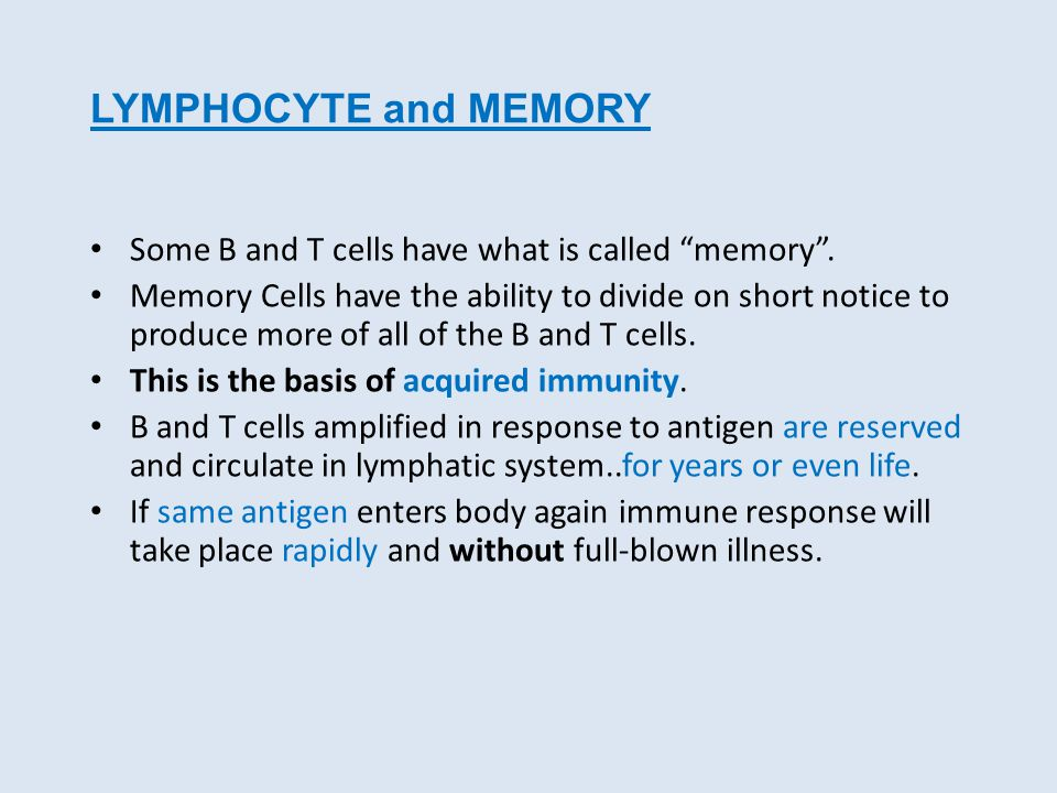 LYMPHOCYTE and MEMORY Some B and T cells have what is called memory .