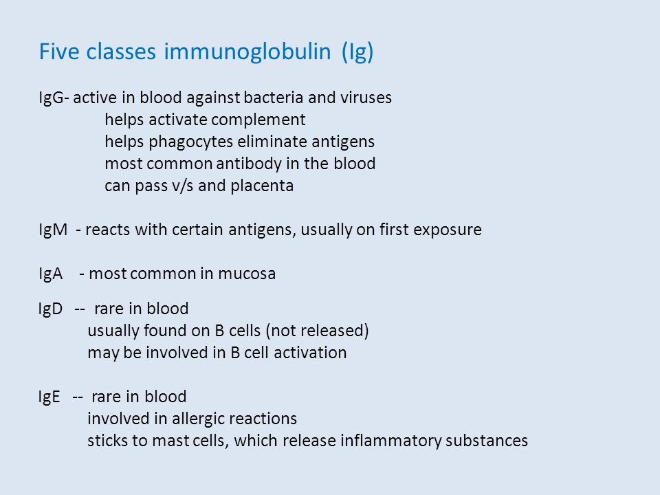 Five classes immunoglobulin (Ig)