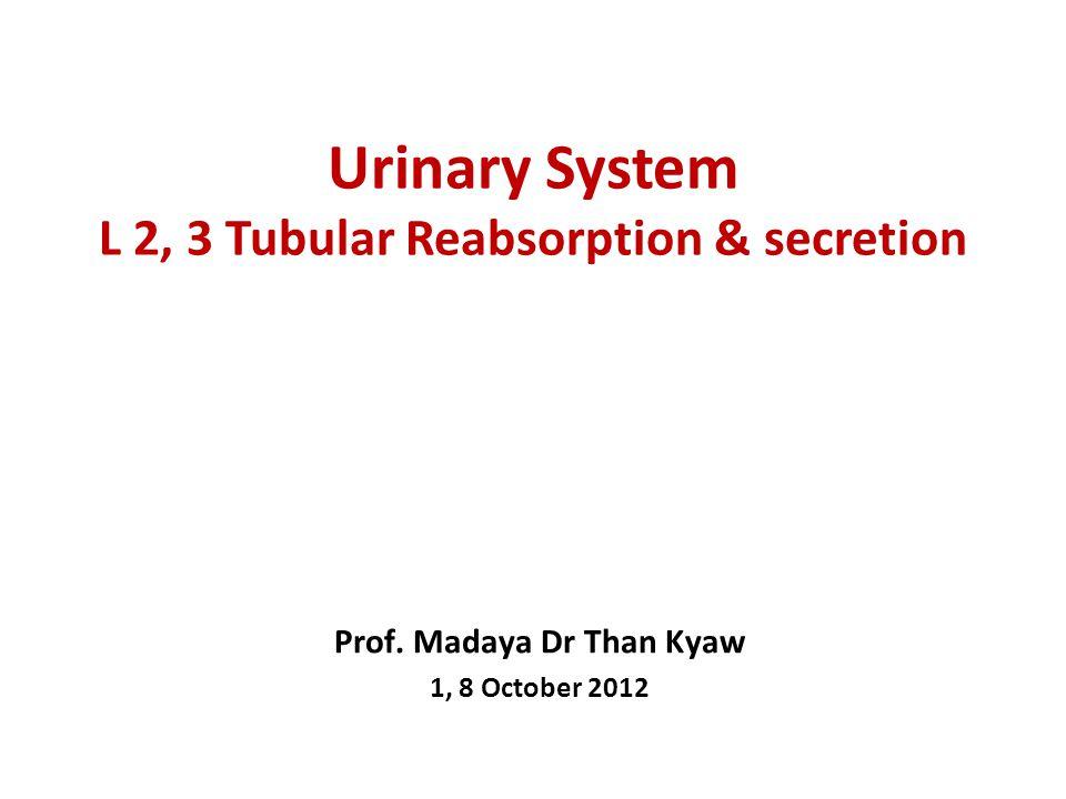 Urinary System L 2, 3 Tubular Reabsorption & secretion