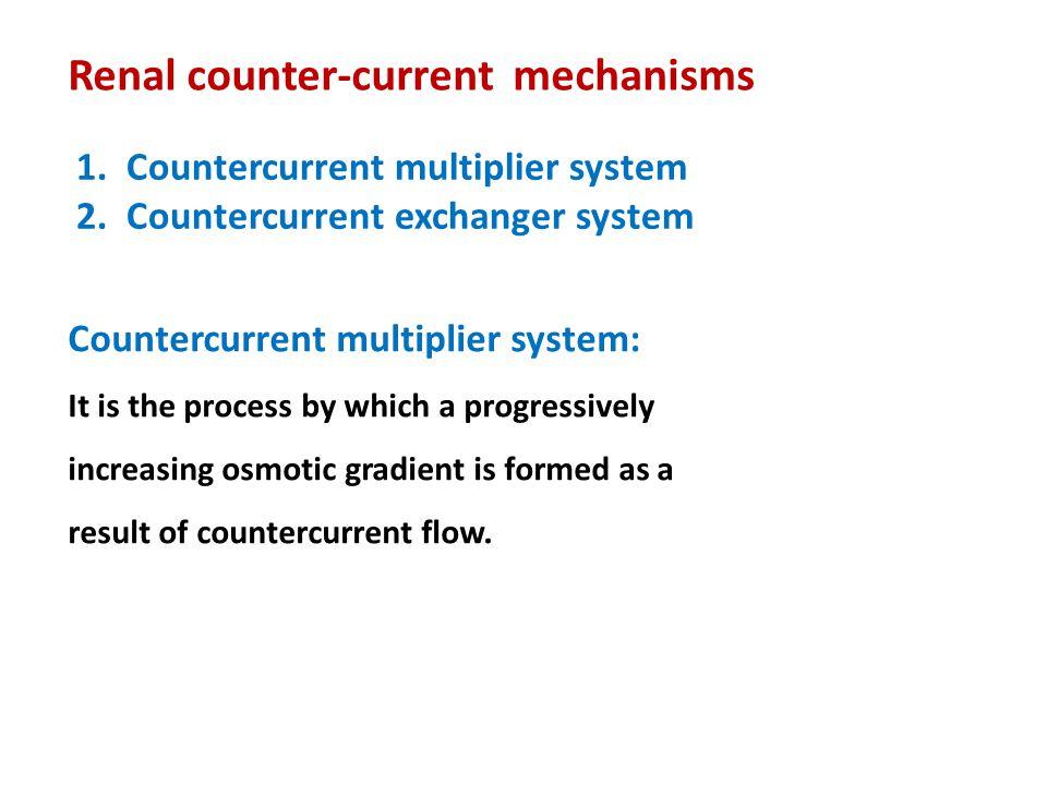 Renal counter-current mechanisms