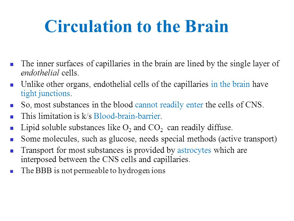 Circulation to the Brain