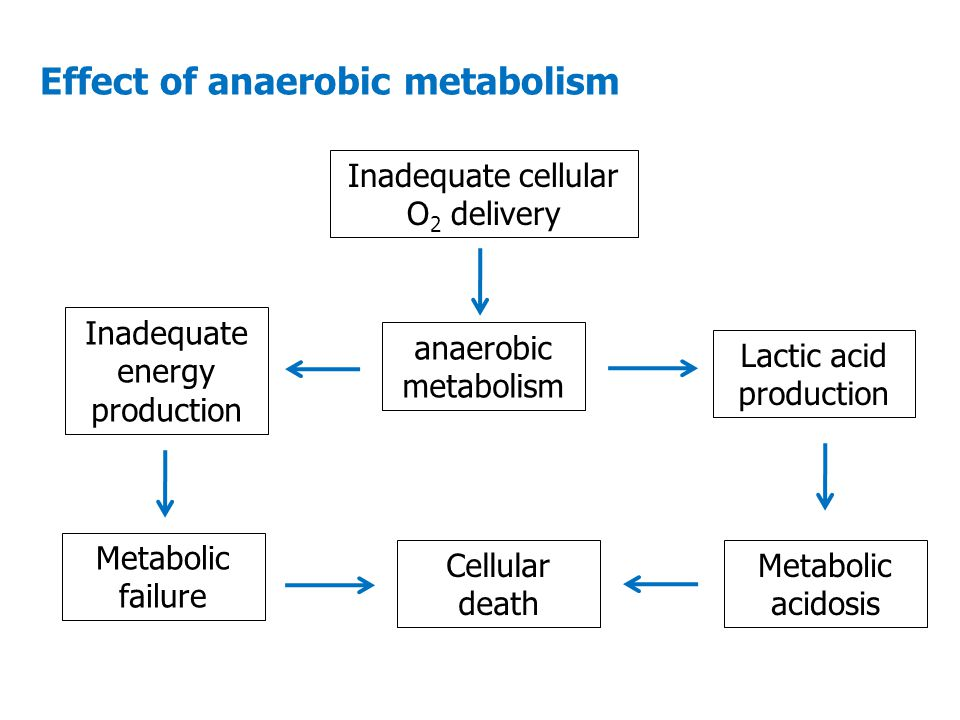 Effect of anaerobic metabolism