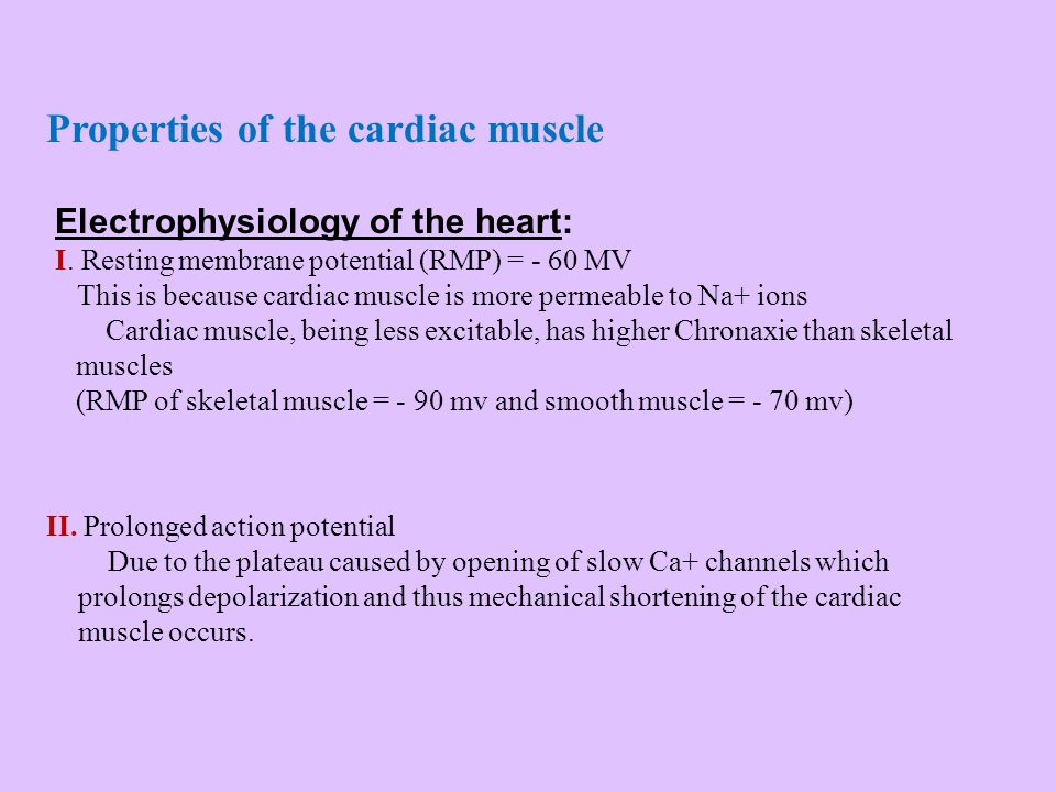 Properties of the cardiac muscle