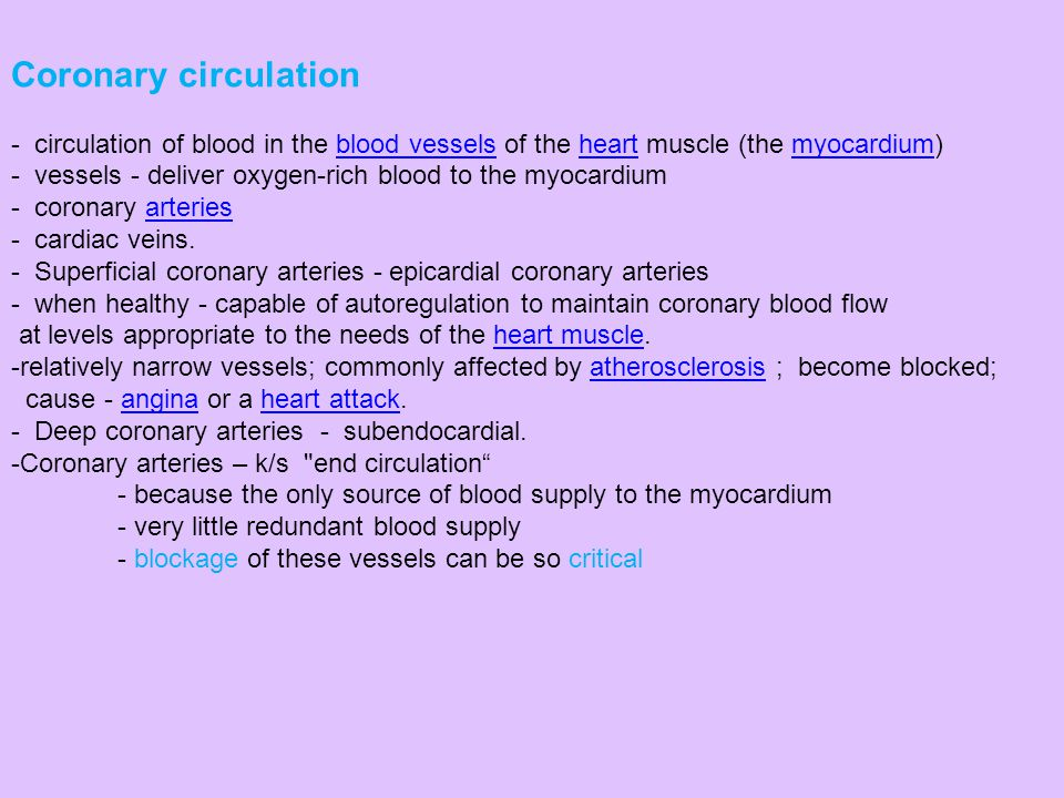 Coronary circulation circulation of blood in the blood vessels of the heart muscle (the myocardium)