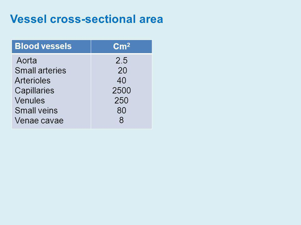 Vessel cross-sectional area