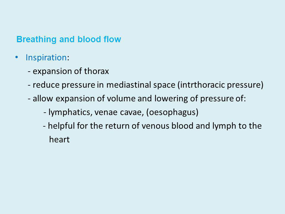 Breathing and blood flow