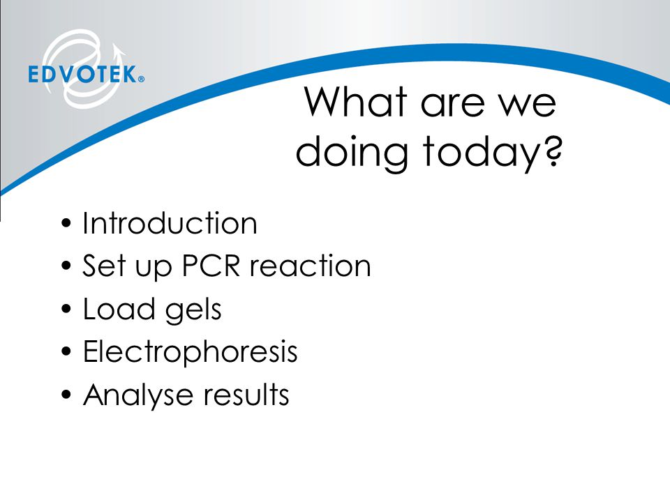 What are we doing today Introduction Set up PCR reaction Load gels