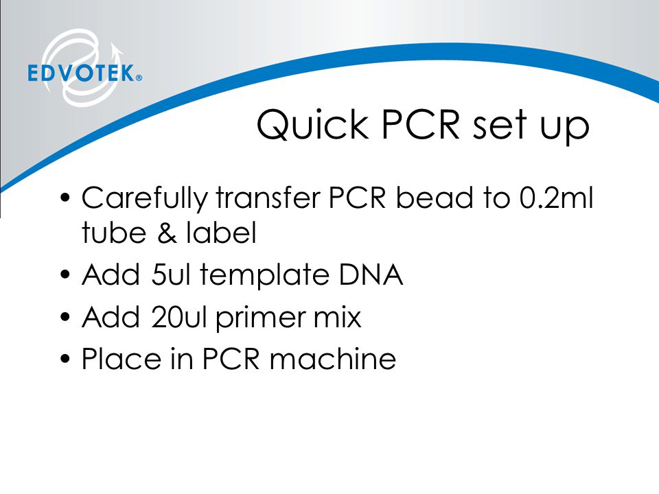 Quick PCR set up Carefully transfer PCR bead to 0.2ml tube & label