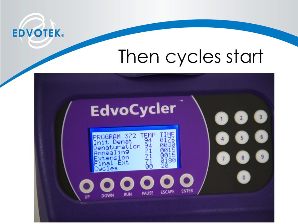 Then cycles start