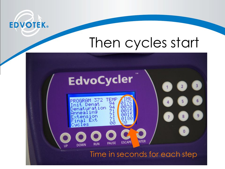Then cycles start Time in seconds for each step