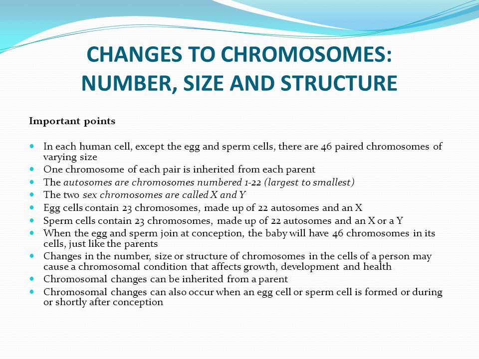 CHANGES TO CHROMOSOMES: NUMBER, SIZE AND STRUCTURE