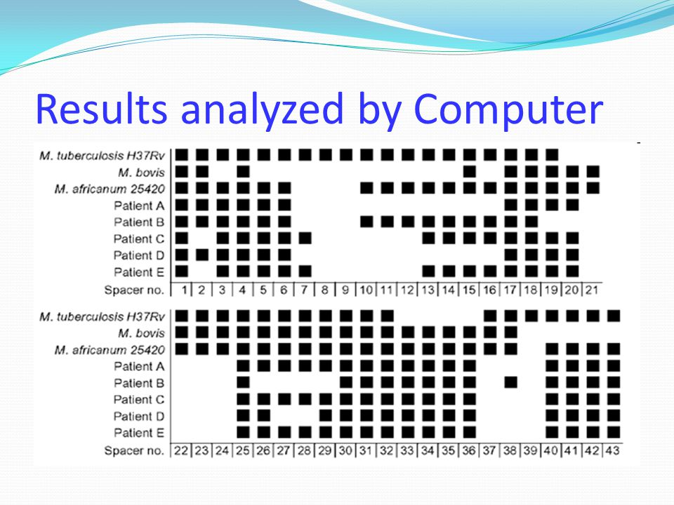 Results analyzed by Computer