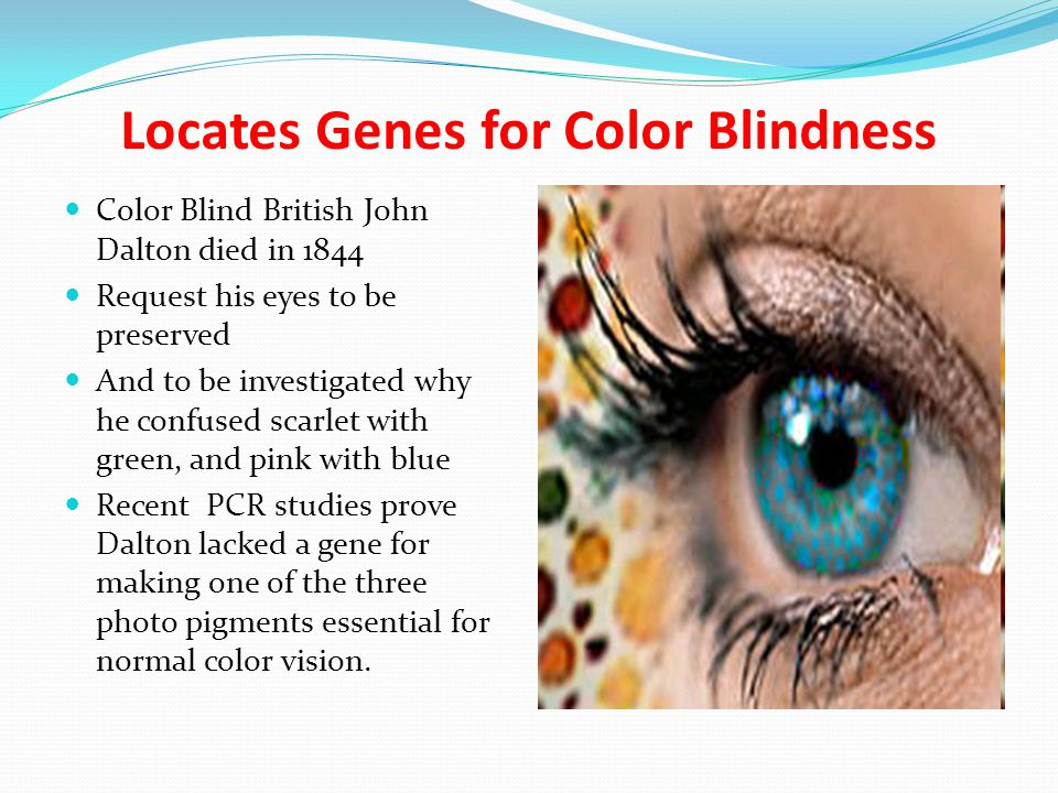 Locates Genes for Color Blindness