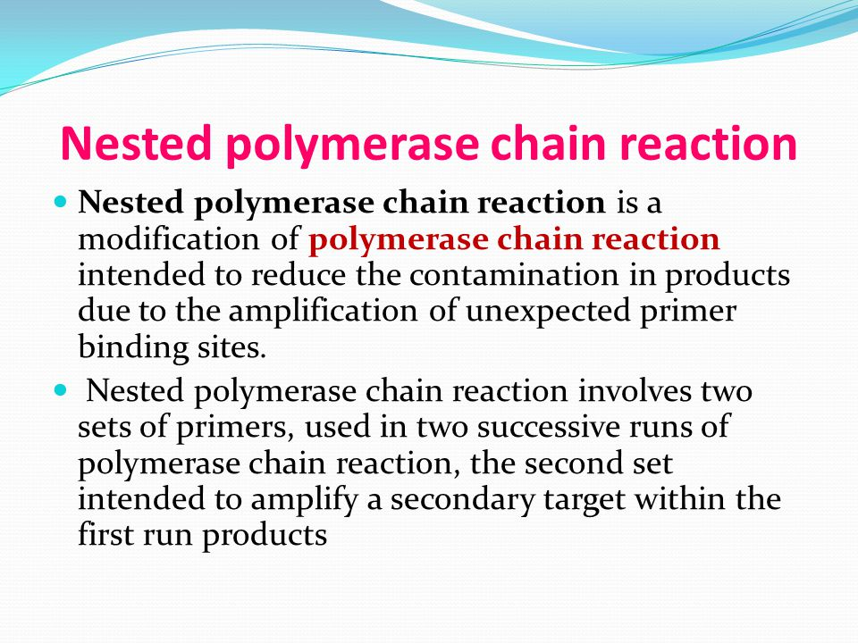Nested polymerase chain reaction
