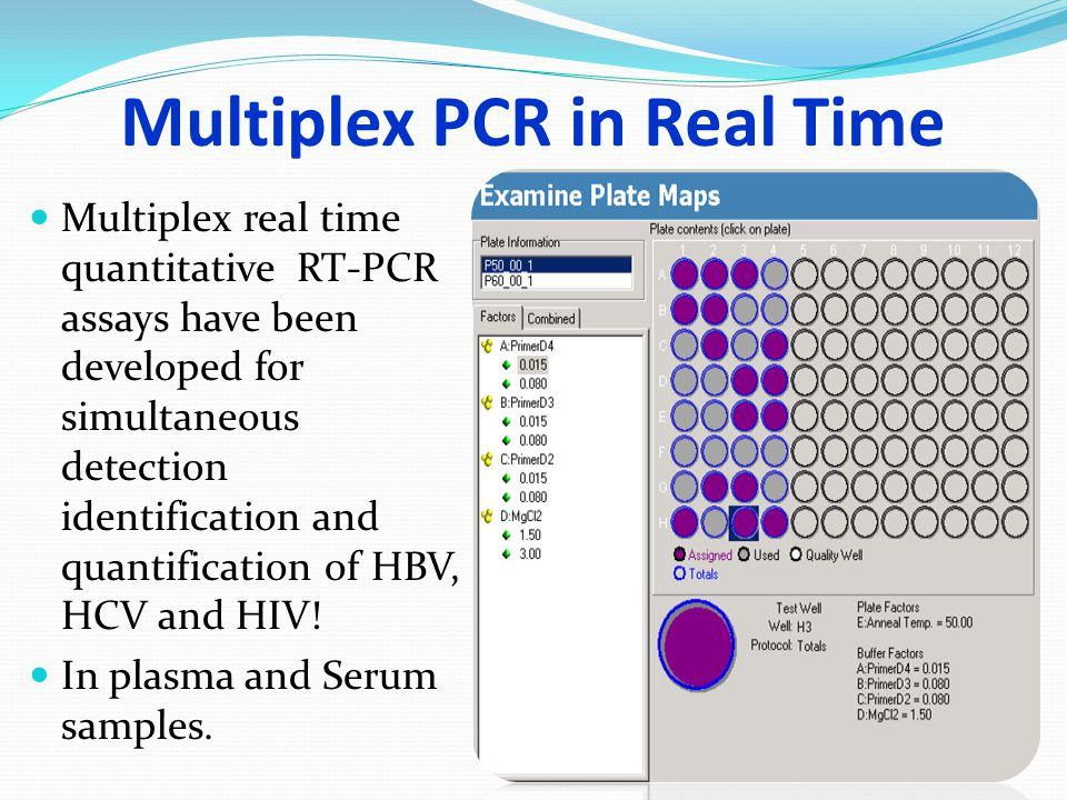 Multiplex PCR in Real Time