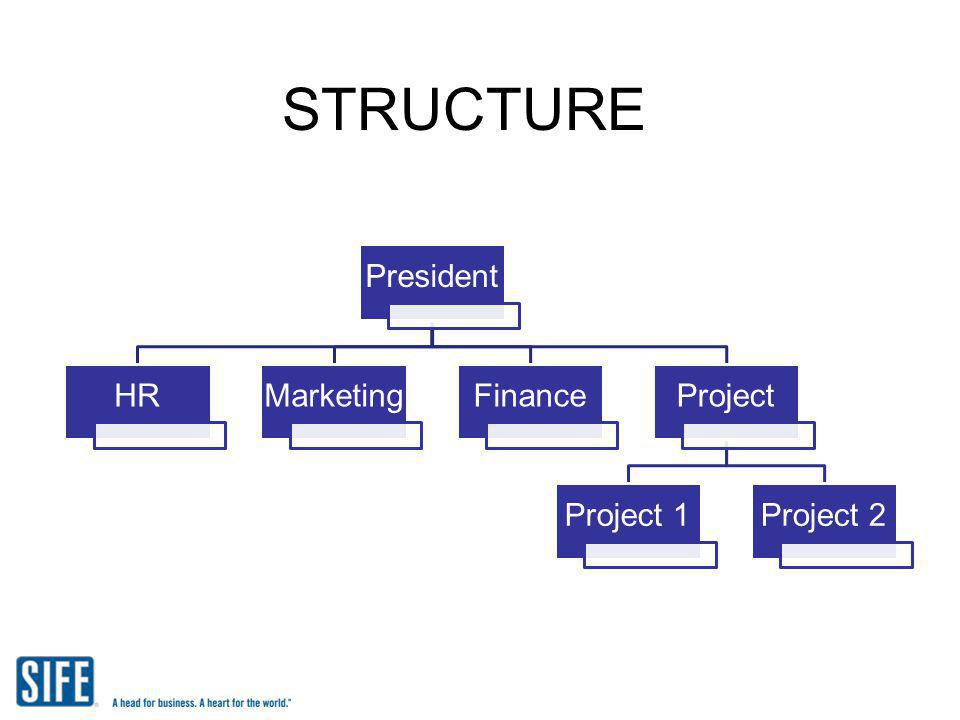 STRUCTURE President HR Marketing Finance Project Project 1 Project 2