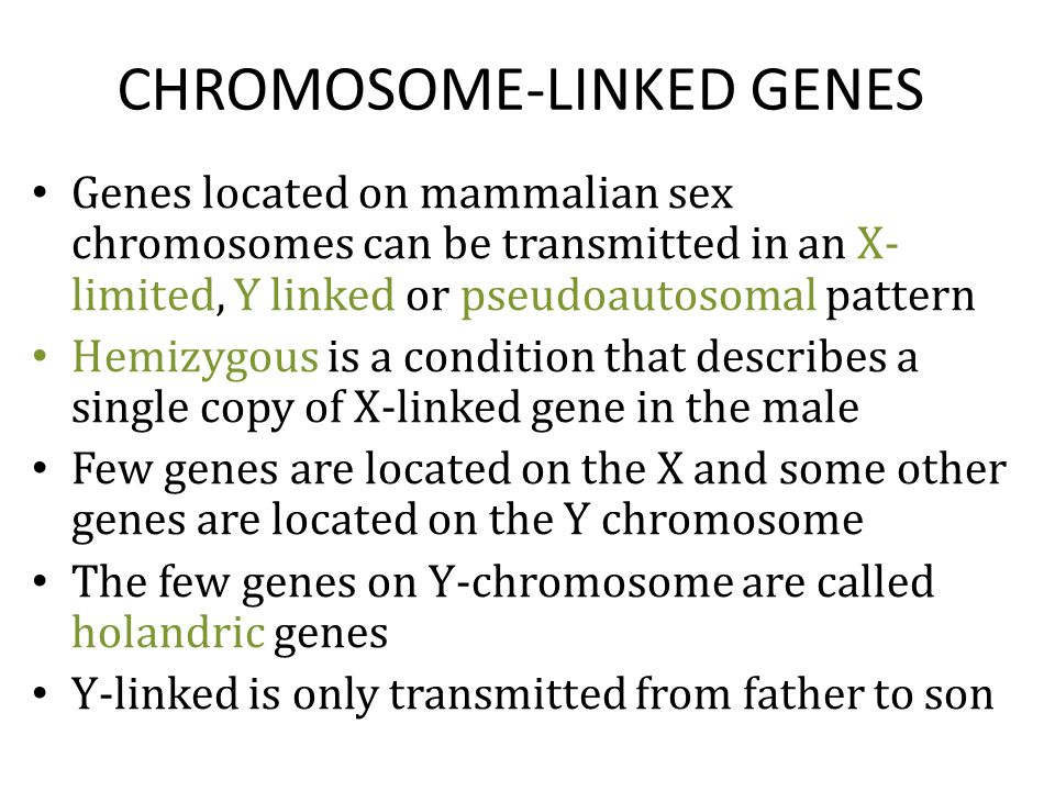 CHROMOSOME-LINKED GENES