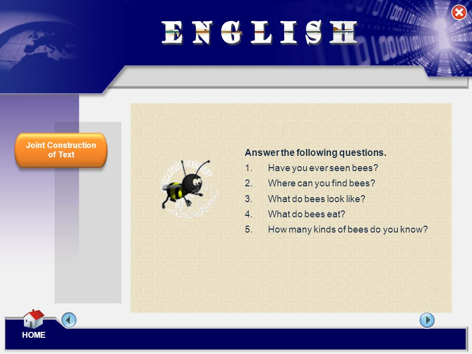 ENGLISH Answer the following questions. Have you ever seen bees
