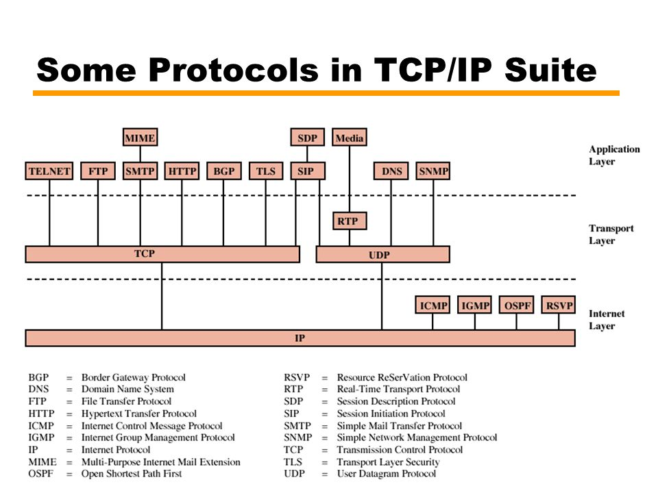 Some Protocols in TCP/IP Suite