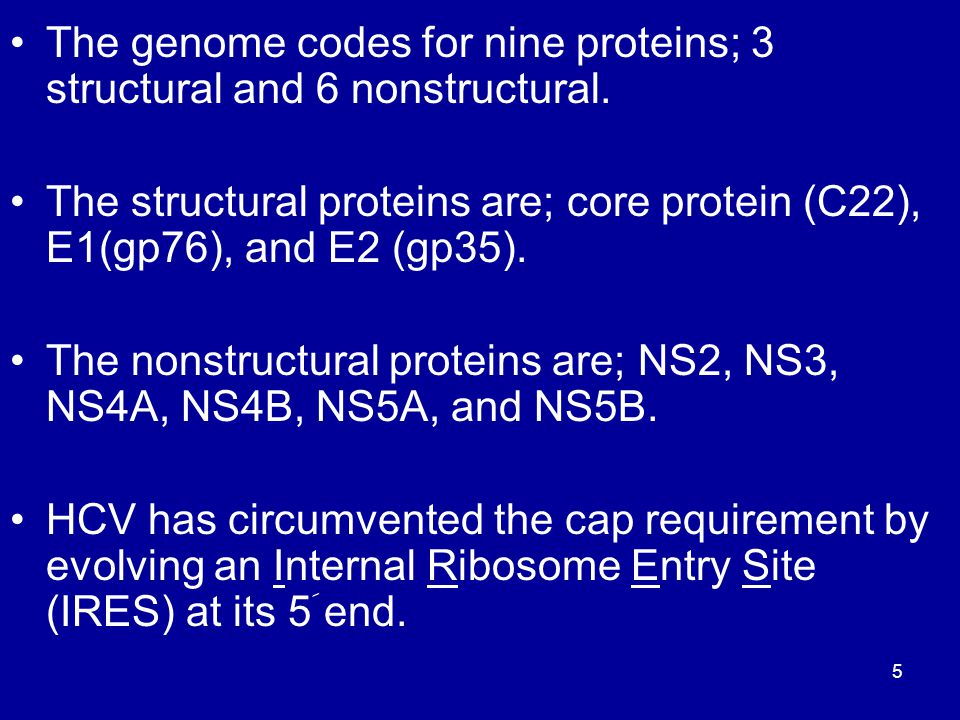 The genome codes for nine proteins; 3 structural and 6 nonstructural.